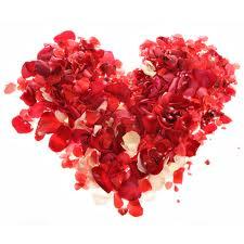 Valentine's Day Petals Heart