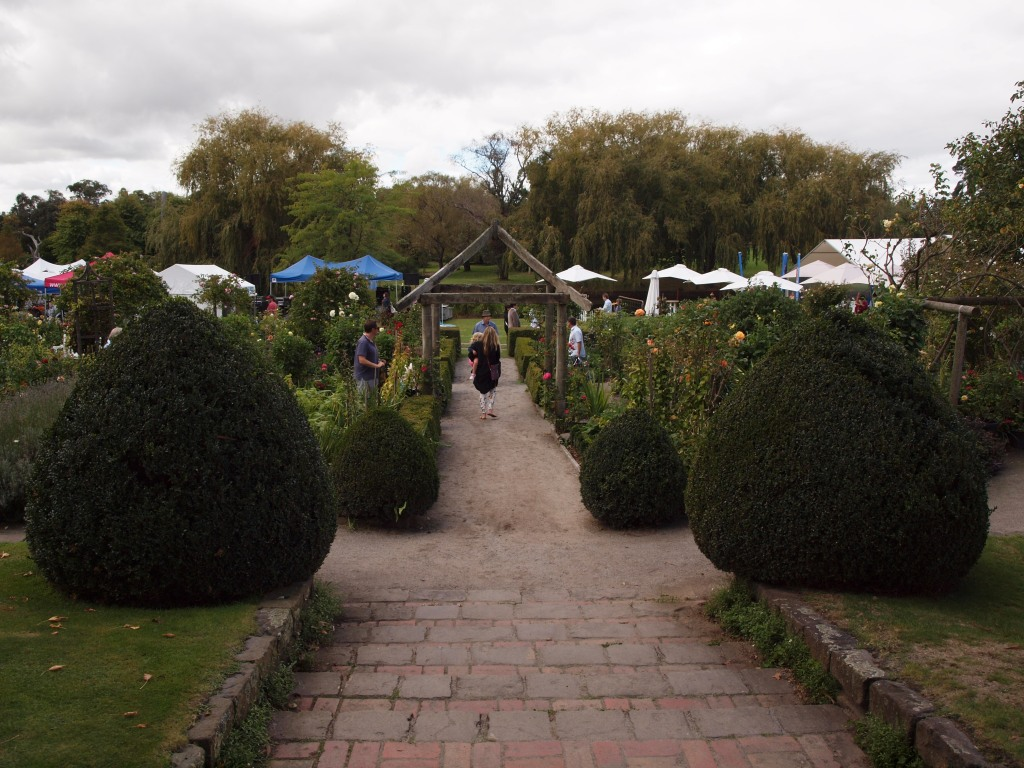 Entering the Rose Garden